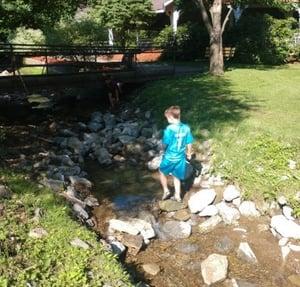 Stream at Alameda Park